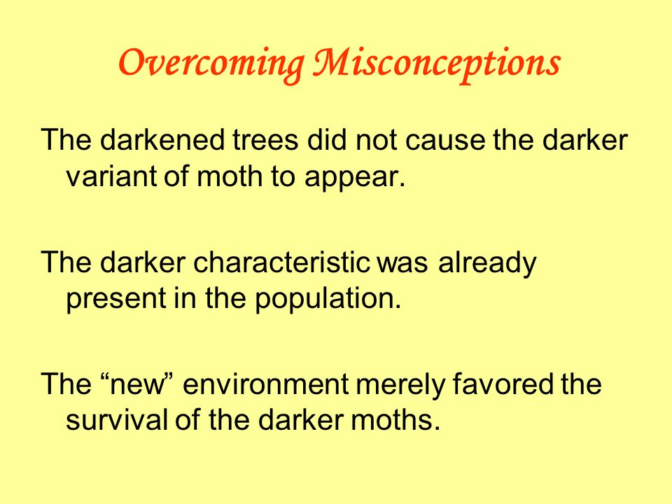 Overcoming Misconceptions