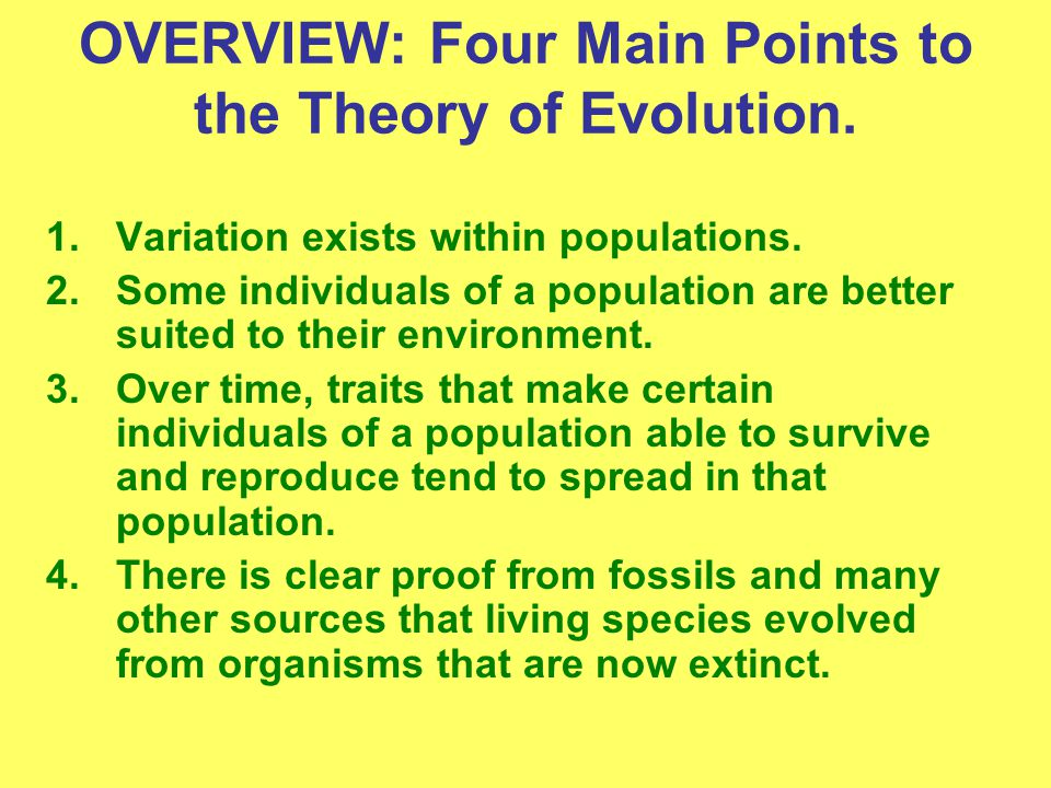 OVERVIEW: Four Main Points to the Theory of Evolution.