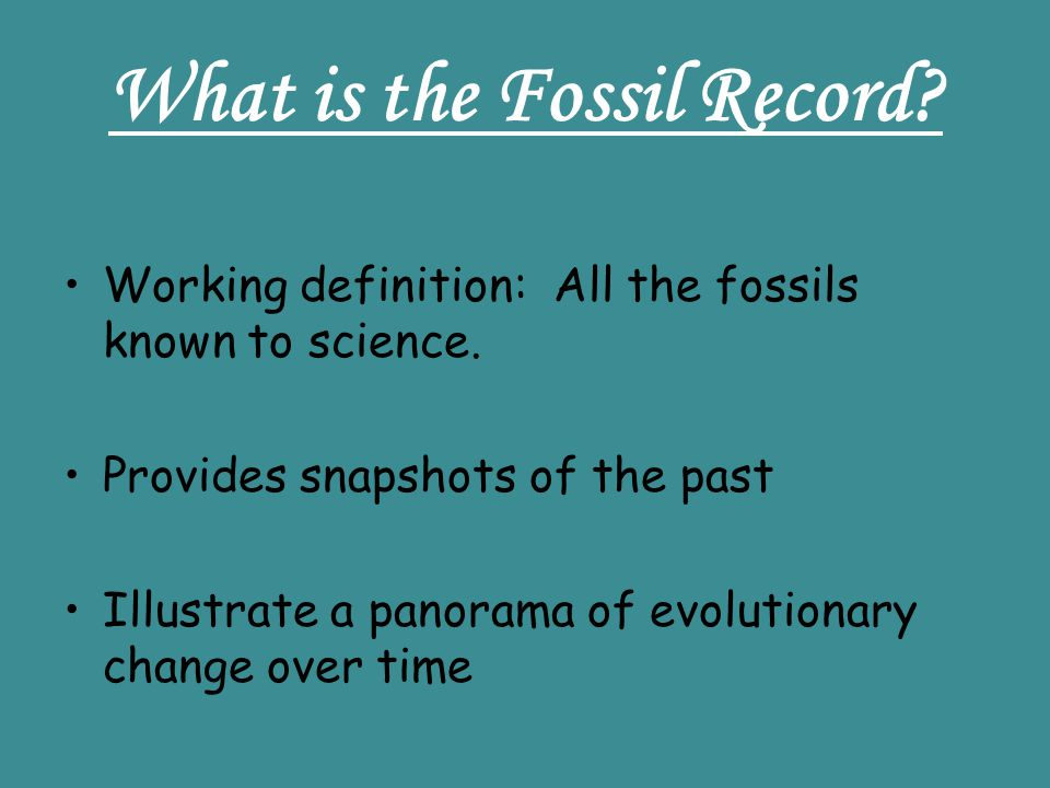 What is the Fossil Record