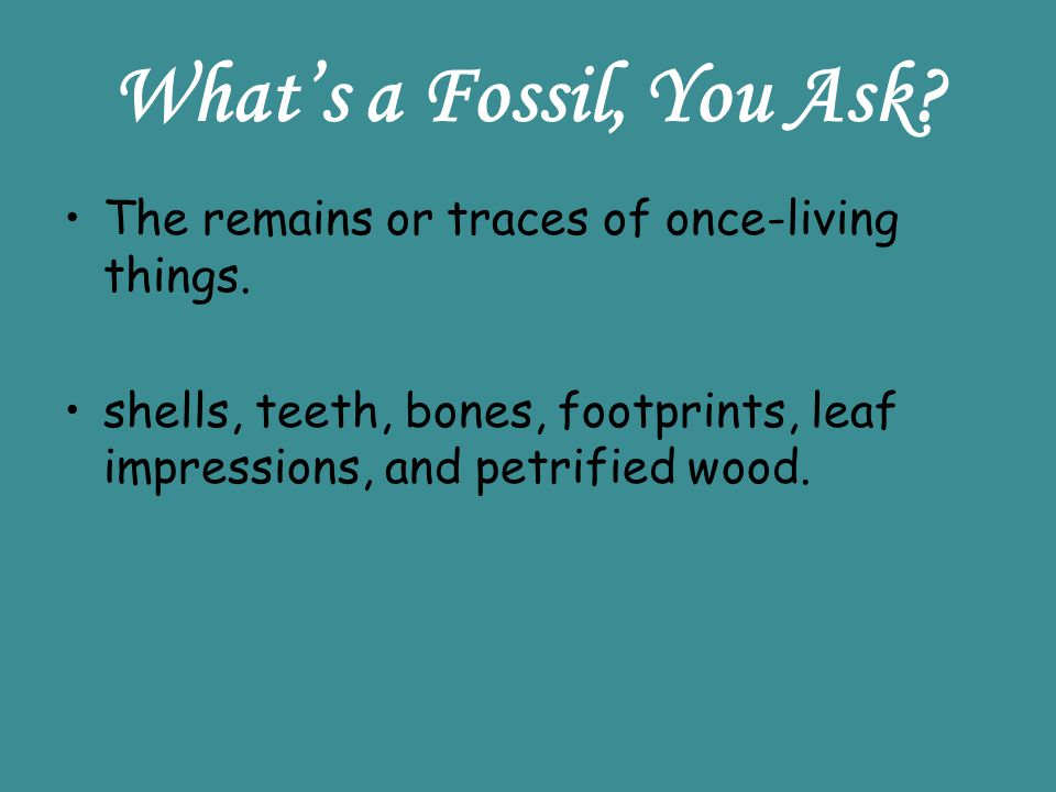 What's a Fossil, You Ask The remains or traces of once-living things.