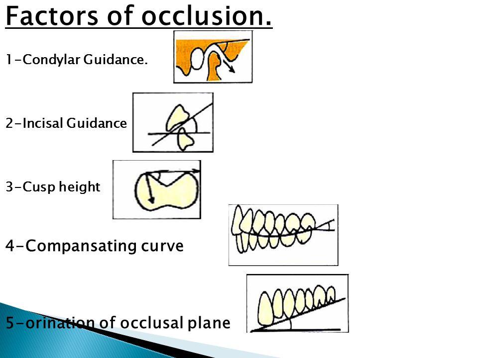 Factors of occlusion. 4-Compansating curve