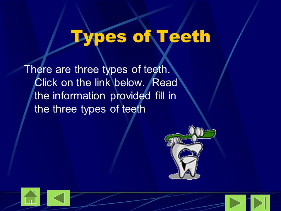 Types of Teeth There are three types of teeth. Click on the link below.