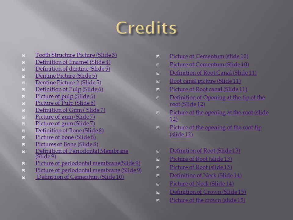 Credits Tooth Structure Picture (Slide 3)