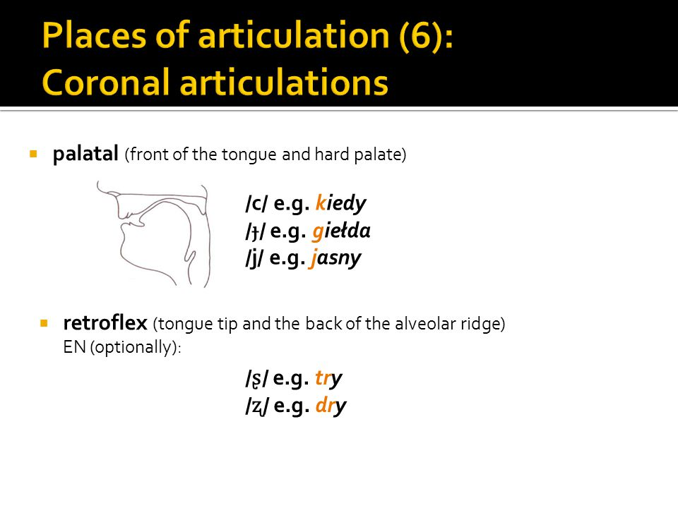 Places of articulation (6): Coronal articulations