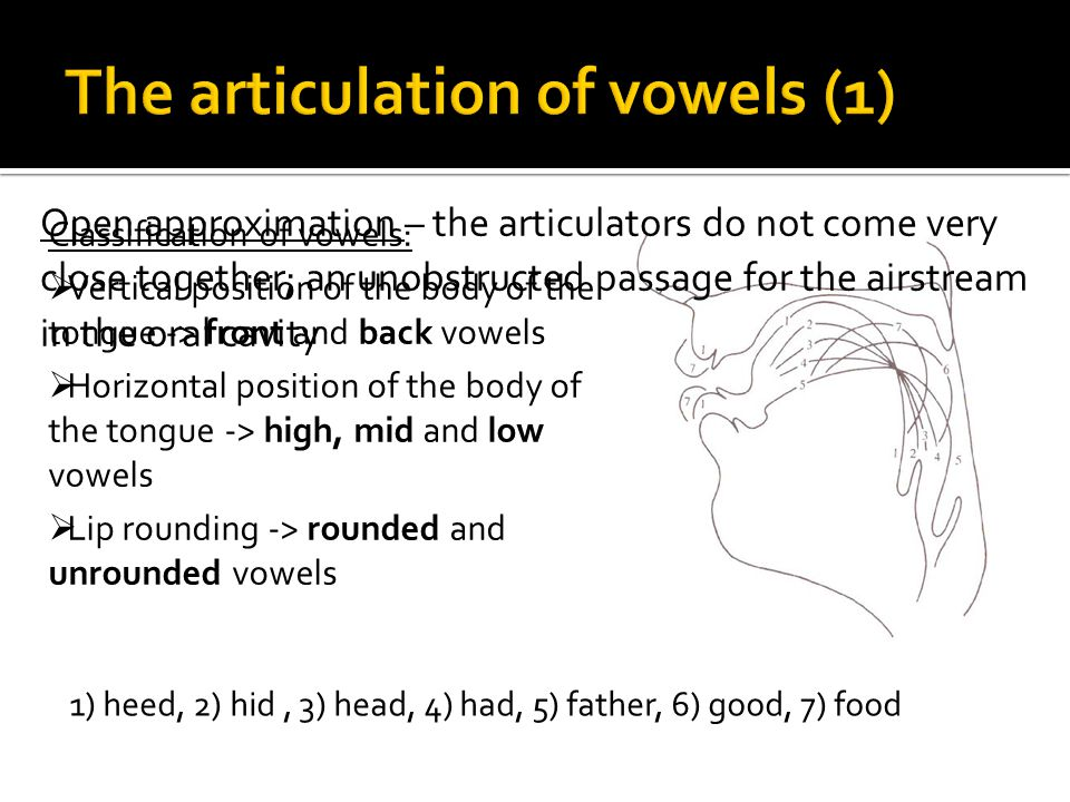 The articulation of vowels (1)