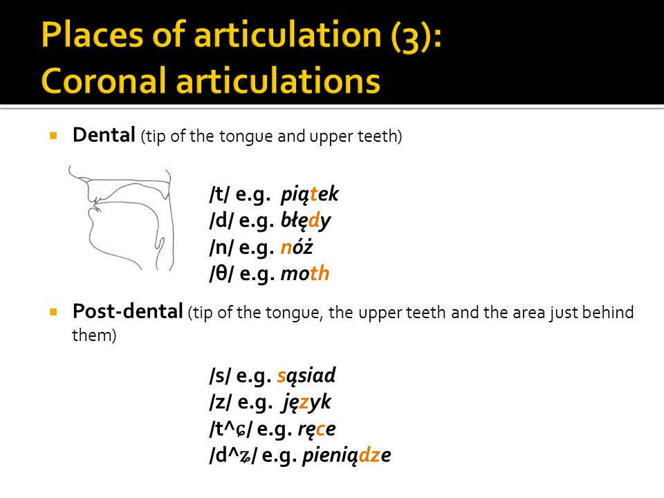 Places of articulation (3): Coronal articulations