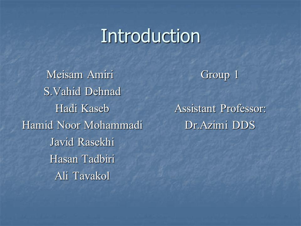 Introduction Meisam Amiri S.Vahid Dehnad Hadi Kaseb