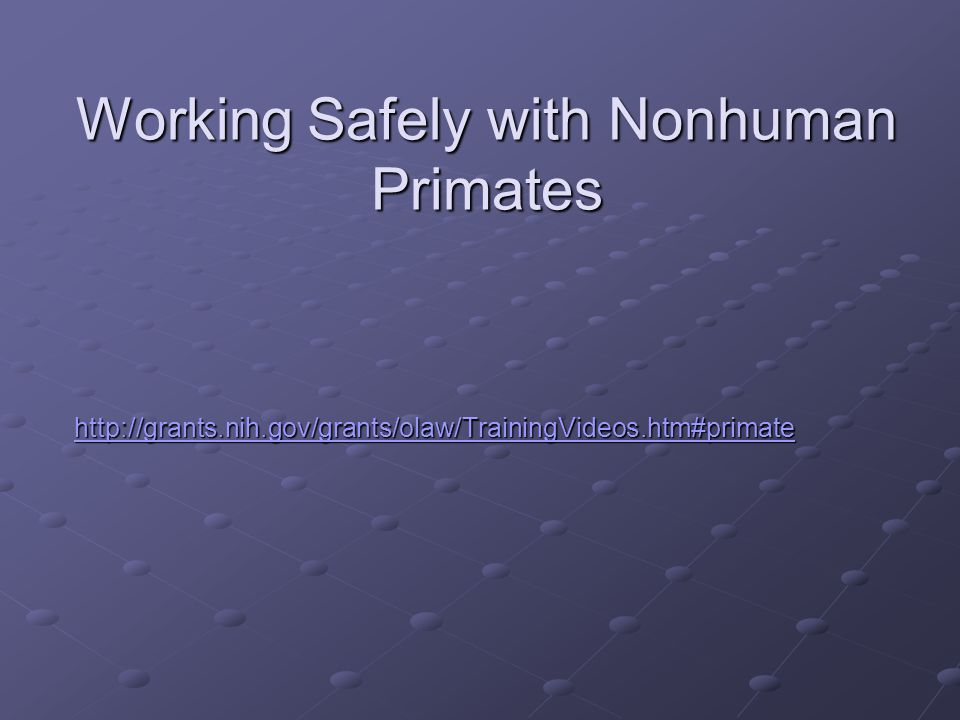 Working Safely with Nonhuman Primates