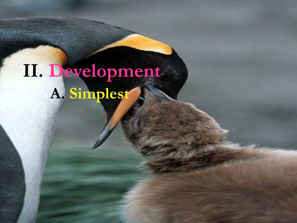 II. Development A. Simplest
