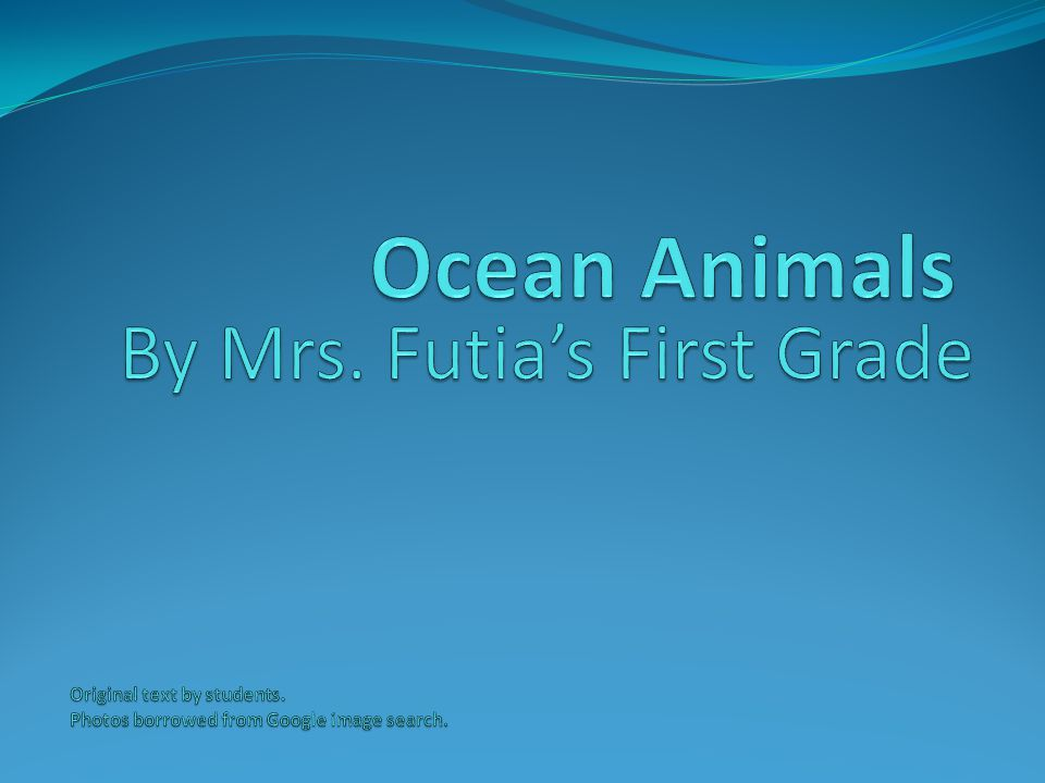 Ocean Animals By Mrs. Futia's First Grade Original text by students.