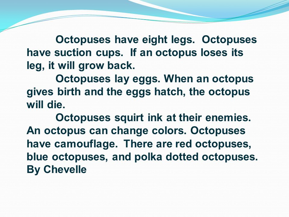 Octopuses have eight legs. Octopuses have suction cups