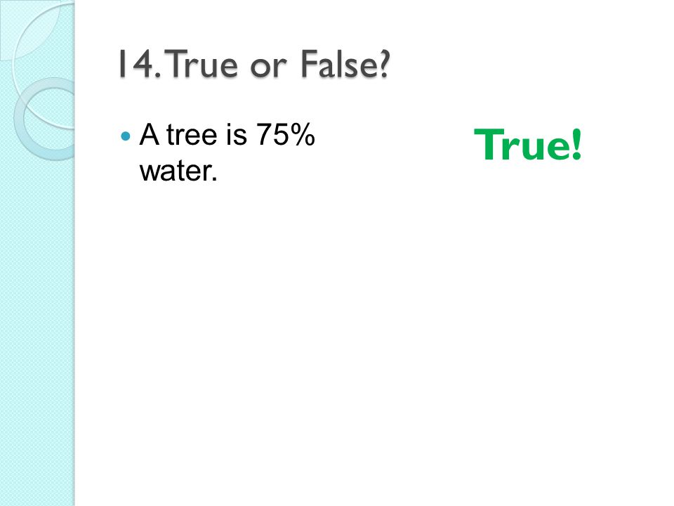 14. True or False A tree is 75% water. True!