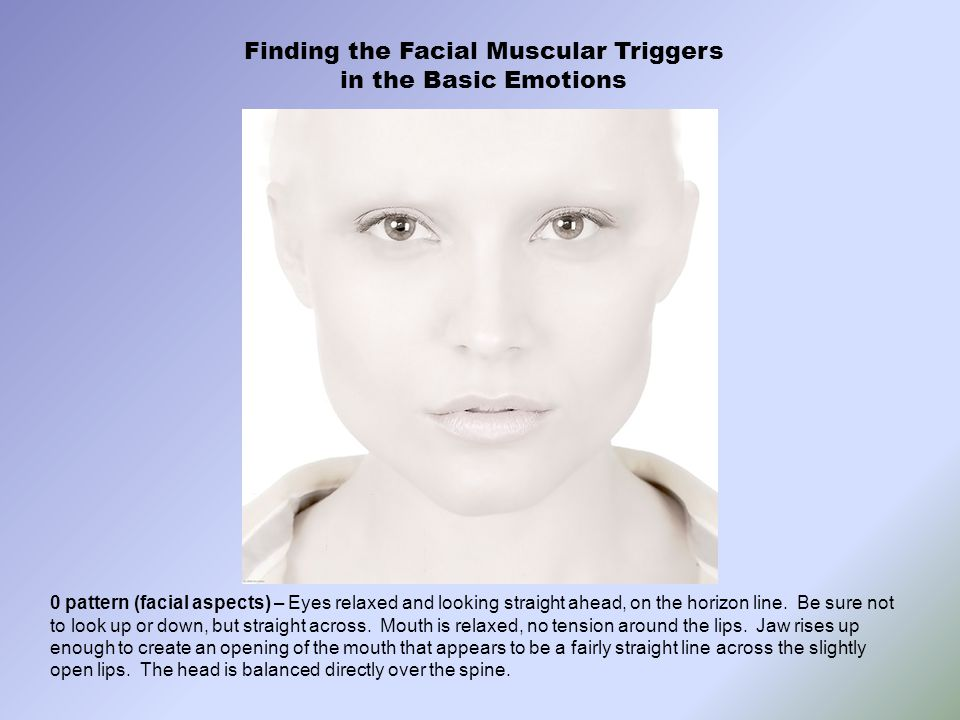 Finding the Facial Muscular Triggers in the Basic Emotions