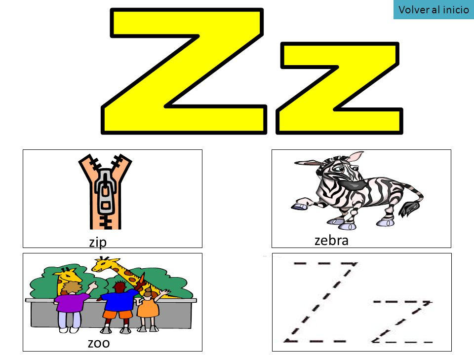 Volver al inicio Zz zip zebra zoo