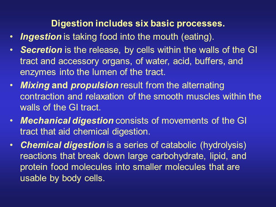 Digestion includes six basic processes.