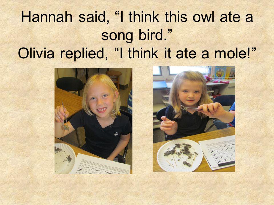 Hannah said, I think this owl ate a song bird