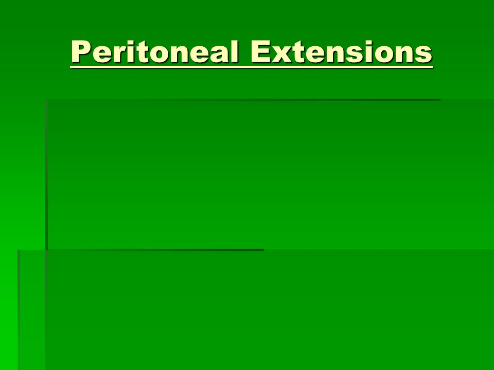 Peritoneal Extensions