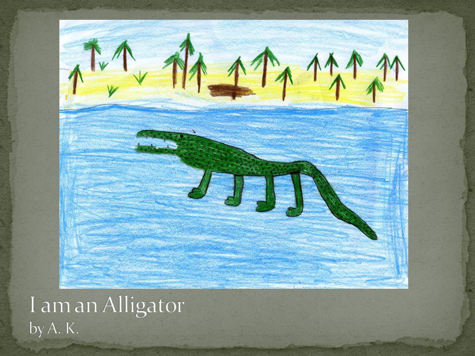 I am an Alligator by A. K.