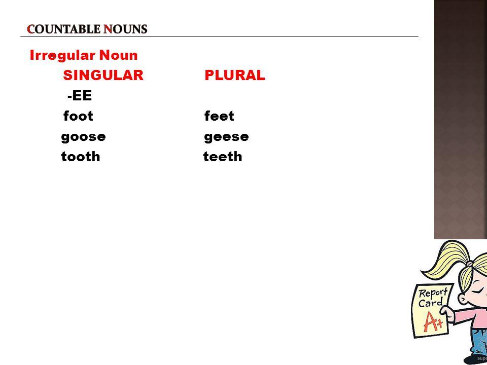 Irregular Noun SINGULAR PLURAL -EE foot feet goose geese tooth teeth