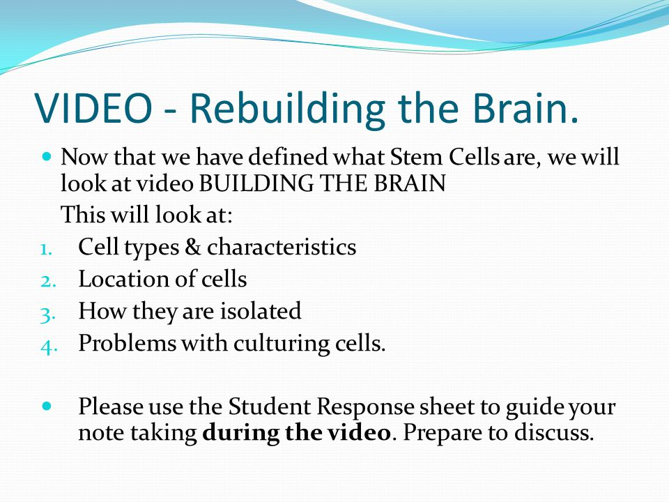 VIDEO - Rebuilding the Brain.