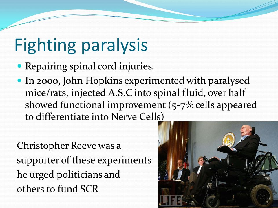 Fighting paralysis Repairing spinal cord injuries.