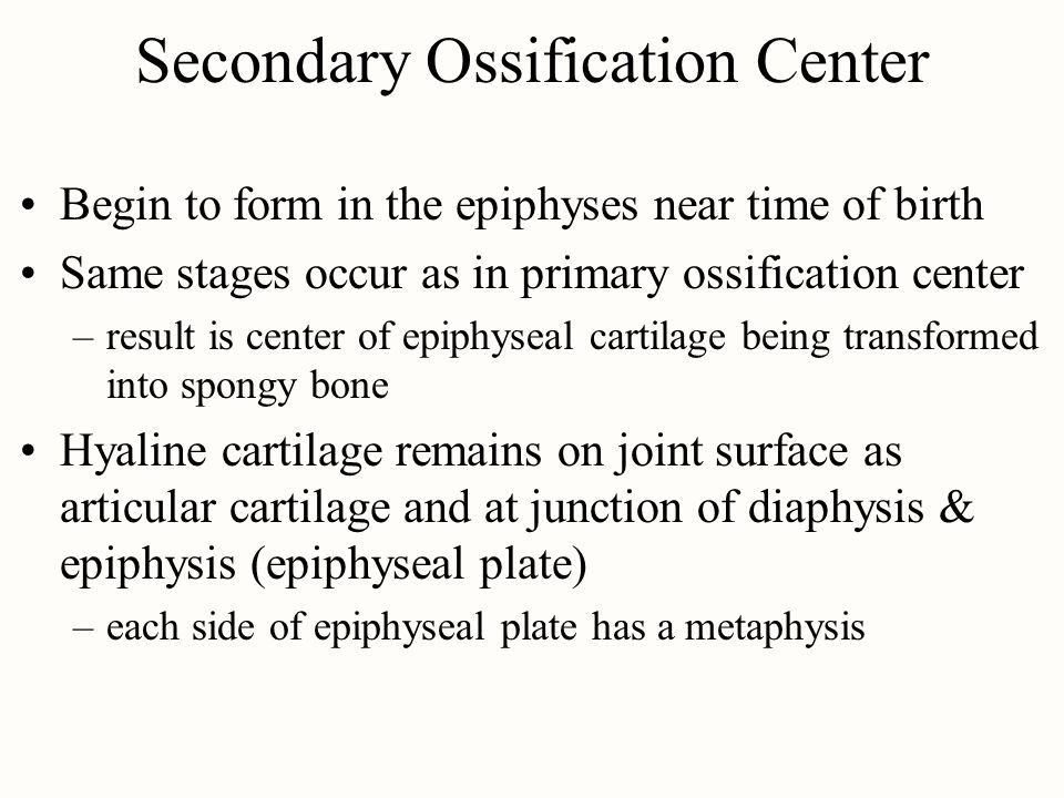 Secondary Ossification Center
