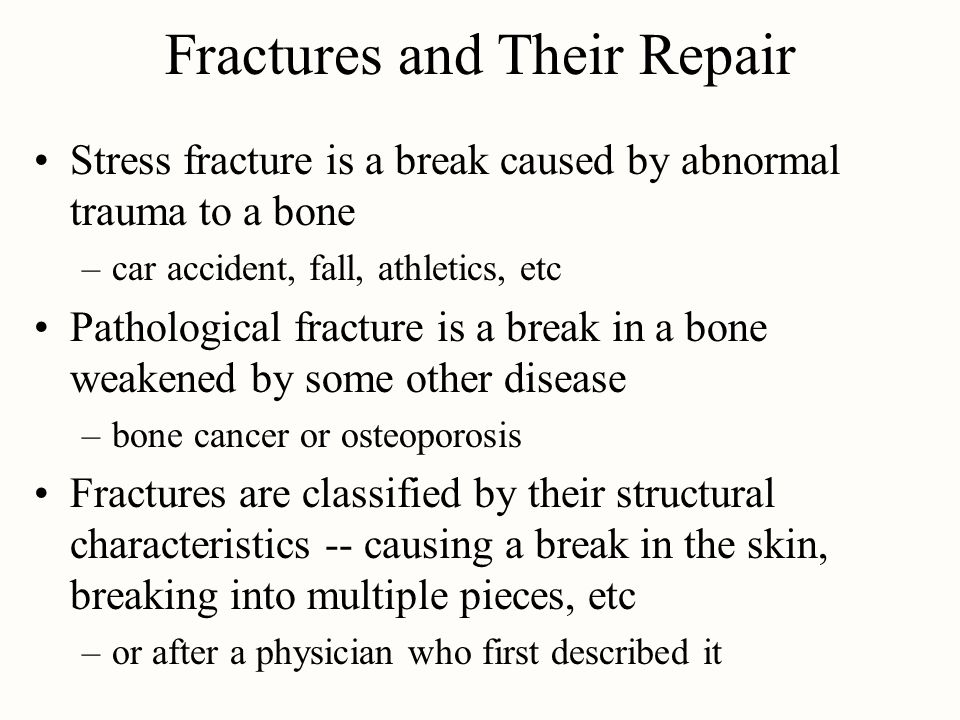 Fractures and Their Repair