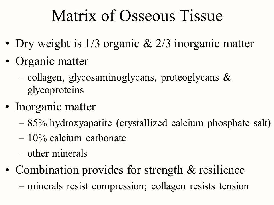 Matrix of Osseous Tissue
