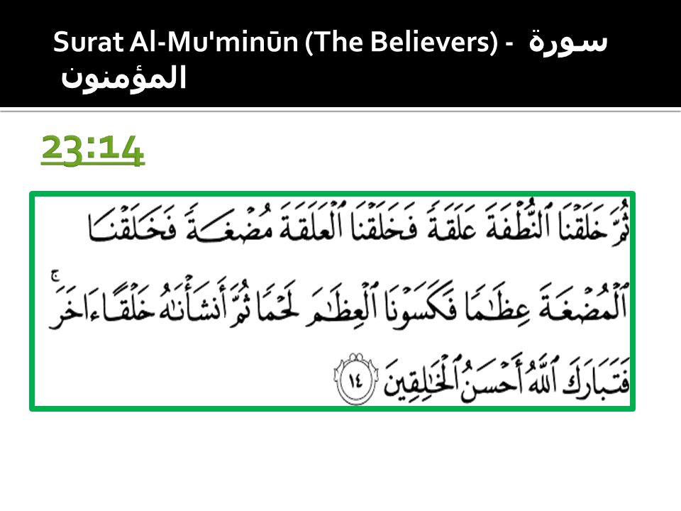 23:14 Surat Al-Mu minūn (The Believers) - سورة المؤمنون