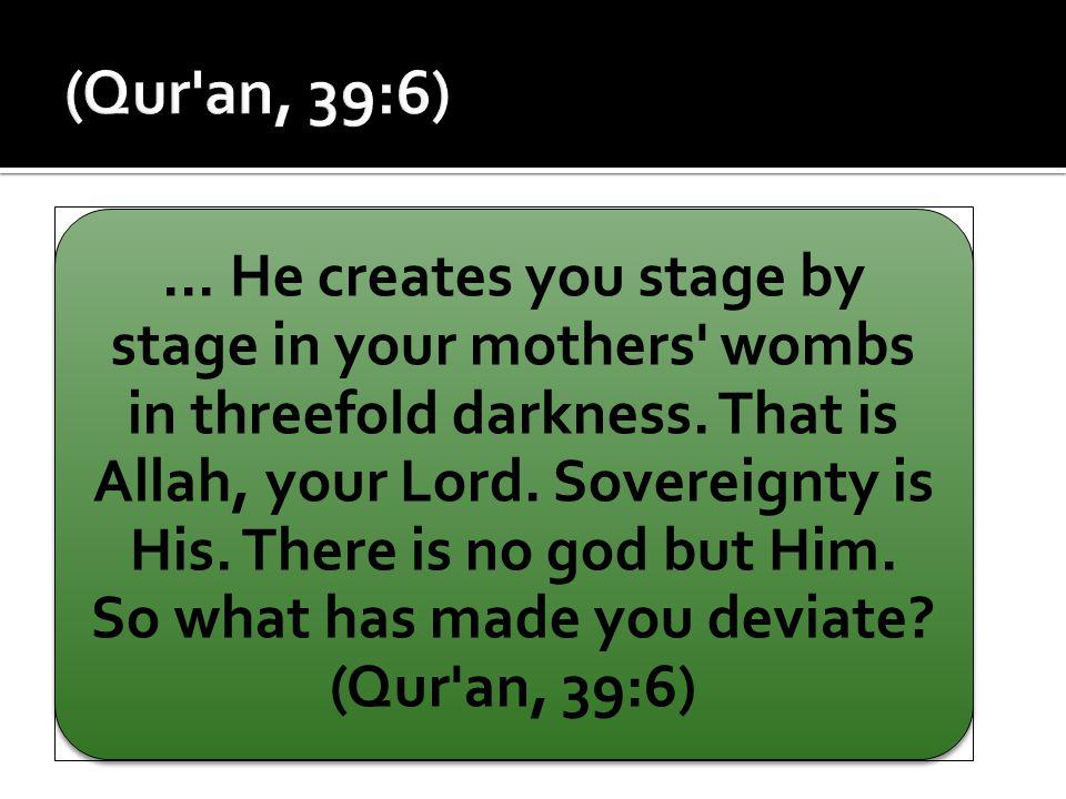 (Qur an, 39:6)