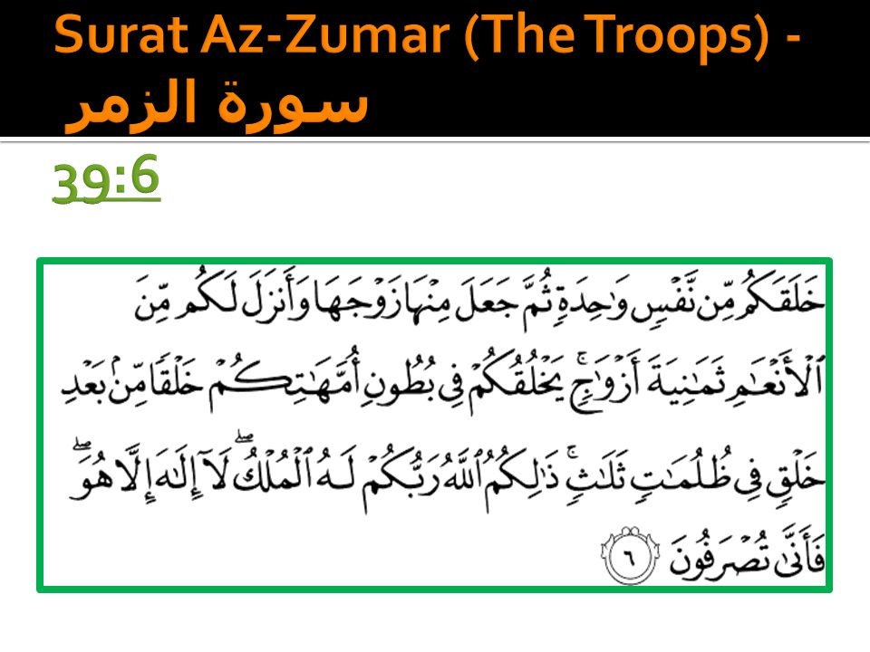 Surat Az-Zumar (The Troops) - سورة الزمر 39:6