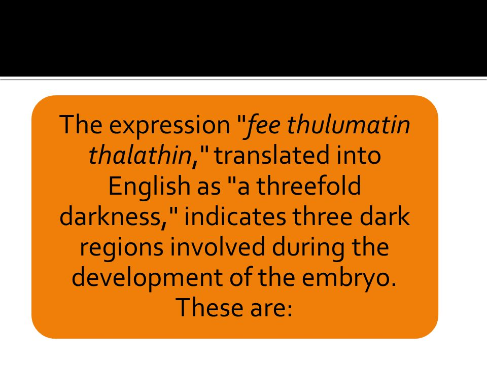 The expression fee thulumatin thalathin, translated into English as a threefold darkness, indicates three dark regions involved during the development of the embryo.