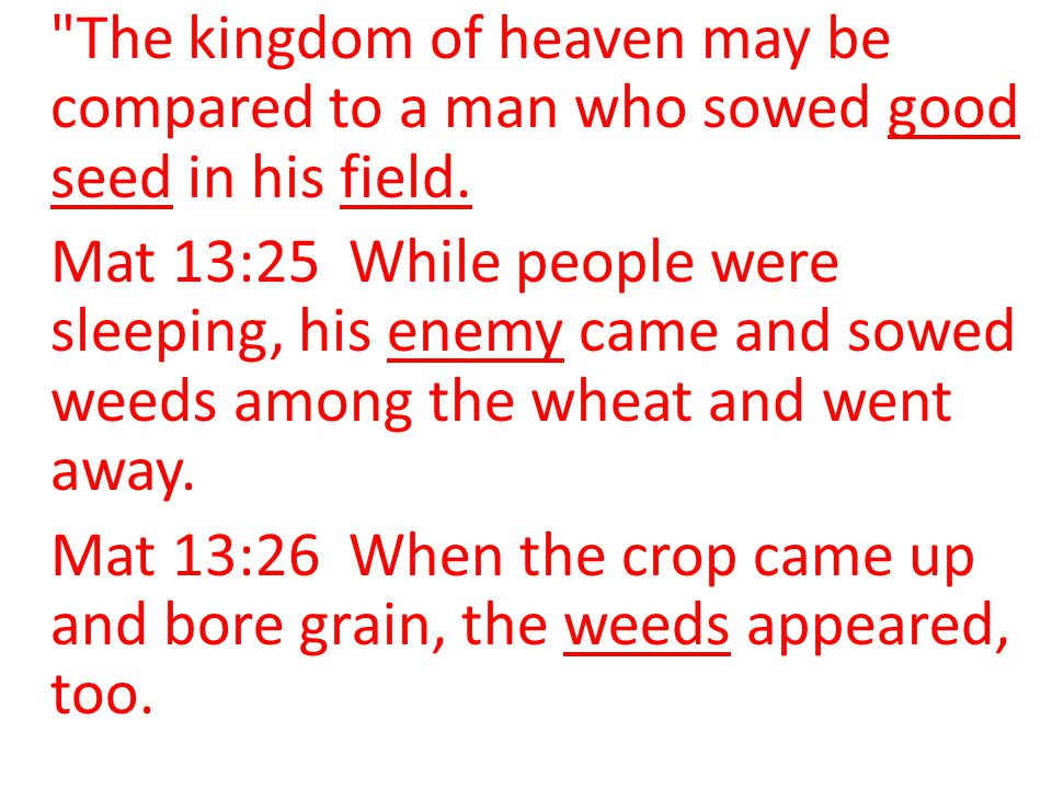 The kingdom of heaven may be compared to a man who sowed good seed in his field.