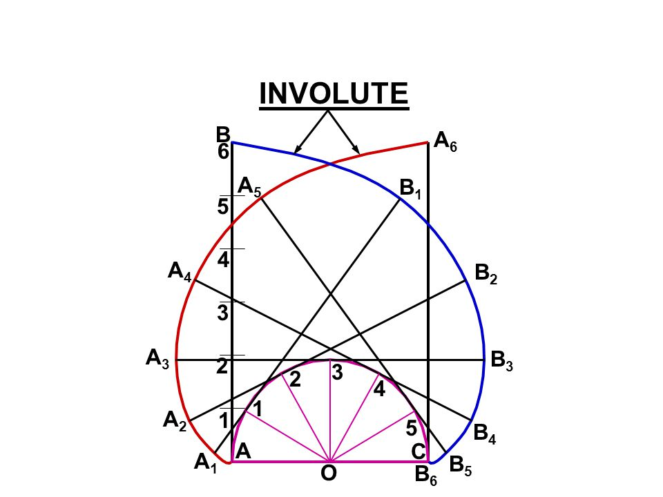 INVOLUTE B A6 6 A5 B1 5 4 A4 B2 3 A3 B3 2 3 2 4 1 A2 1 5 B4 A C A1 B5