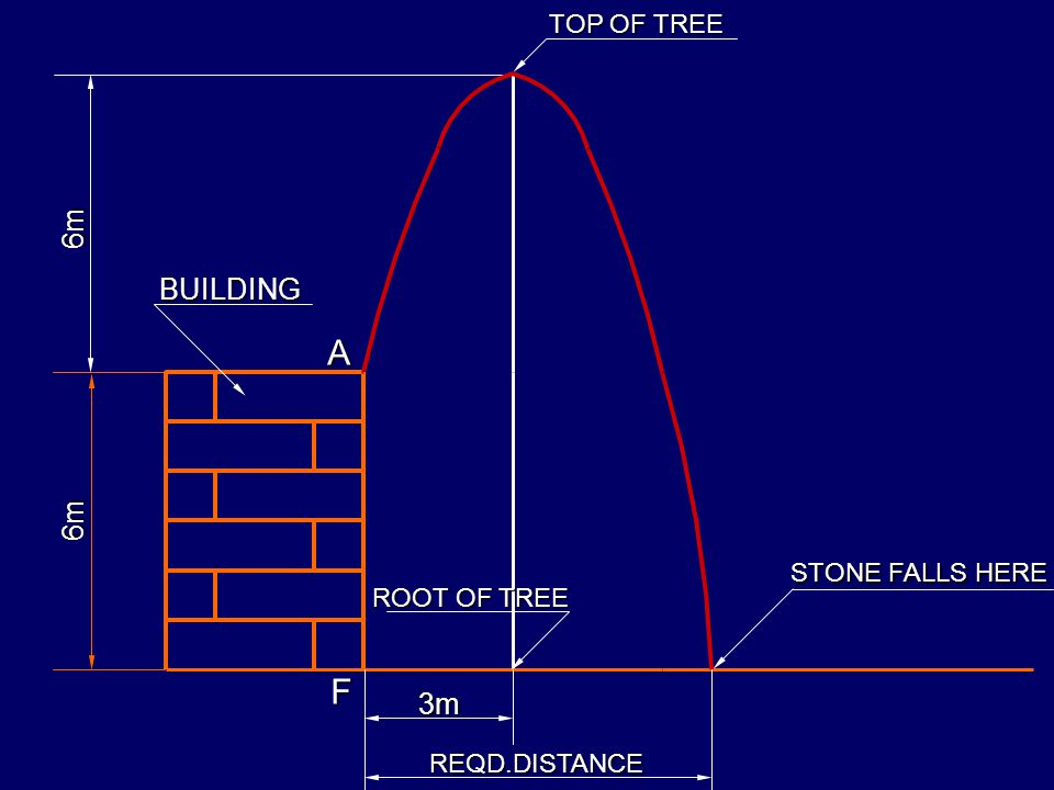 A F 6m BUILDING 6m 3m TOP OF TREE STONE FALLS HERE ROOT OF TREE