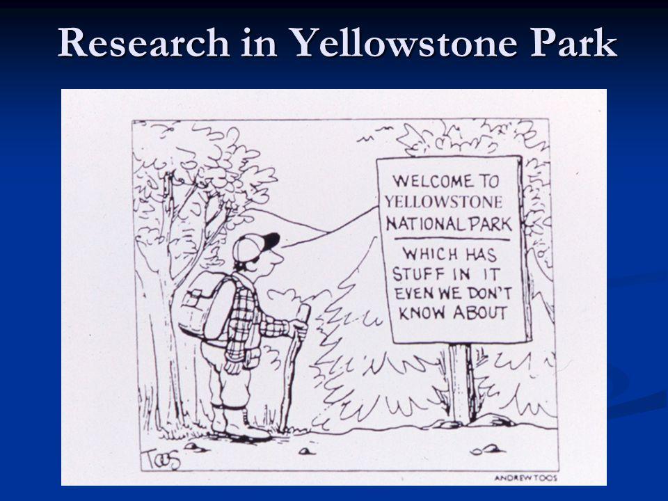 Research in Yellowstone Park