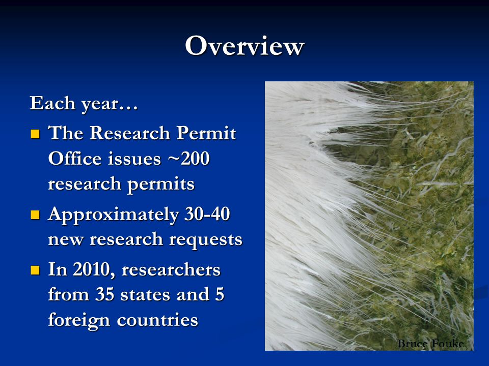 Overview Each year… The Research Permit Office issues ~200 research permits. Approximately 30-40 new research requests.