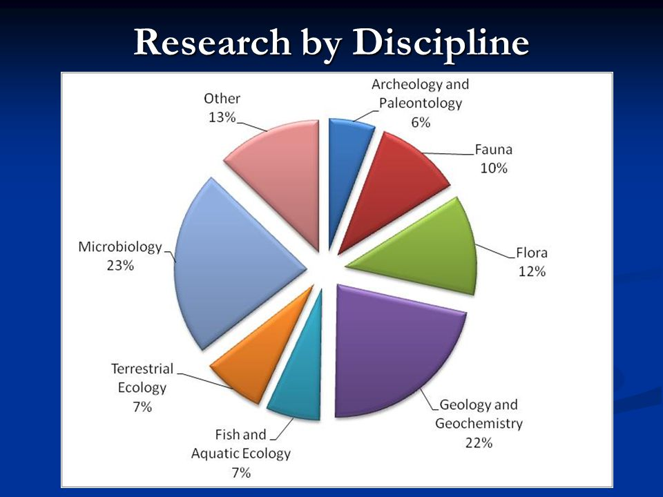 Research by Discipline