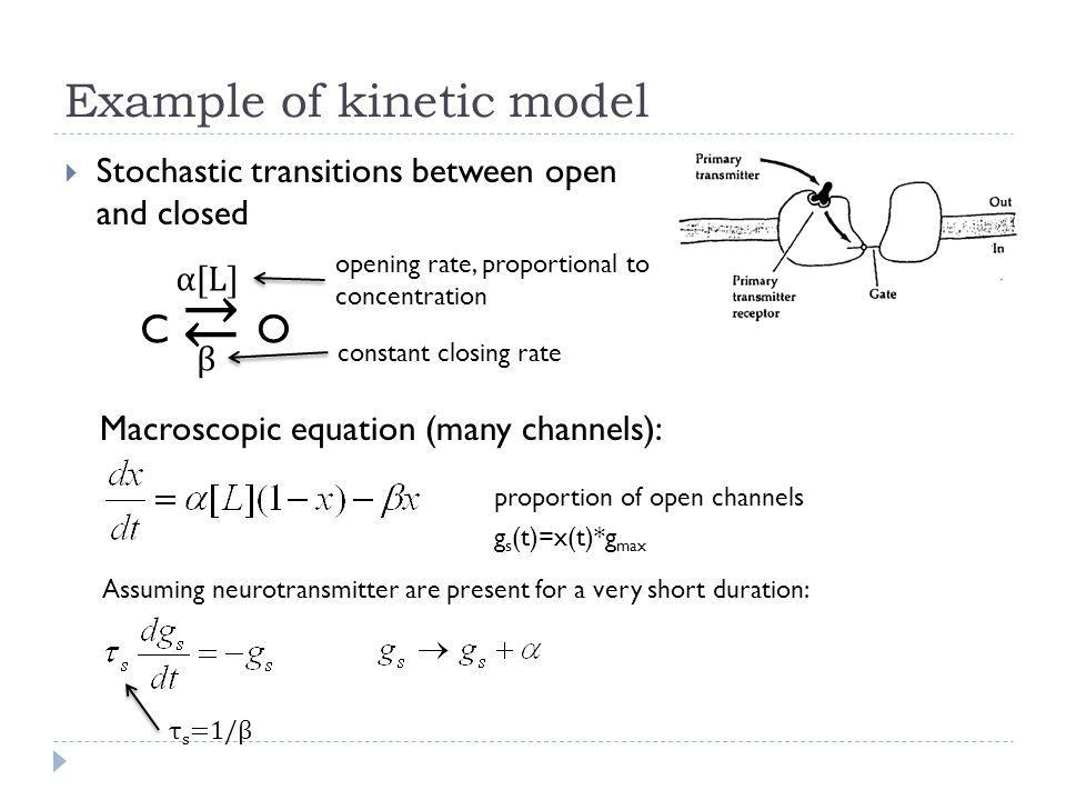 Example of kinetic model