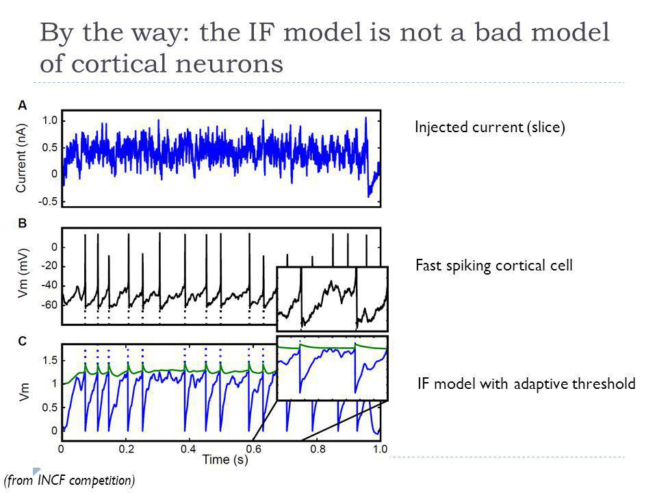 By the way: the IF model is not a bad model of cortical neurons