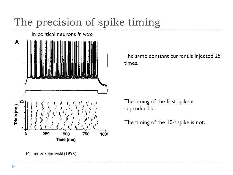 The precision of spike timing