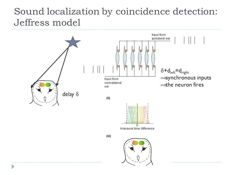 Sound localization by coincidence detection: Jeffress model