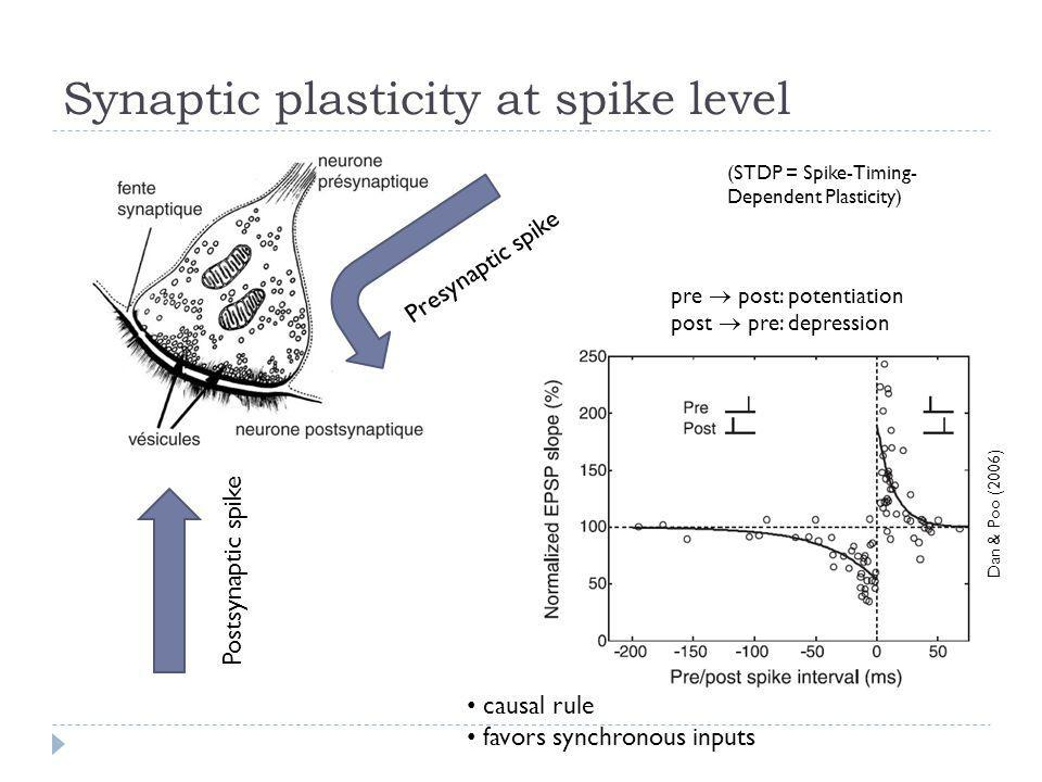 Synaptic plasticity at spike level