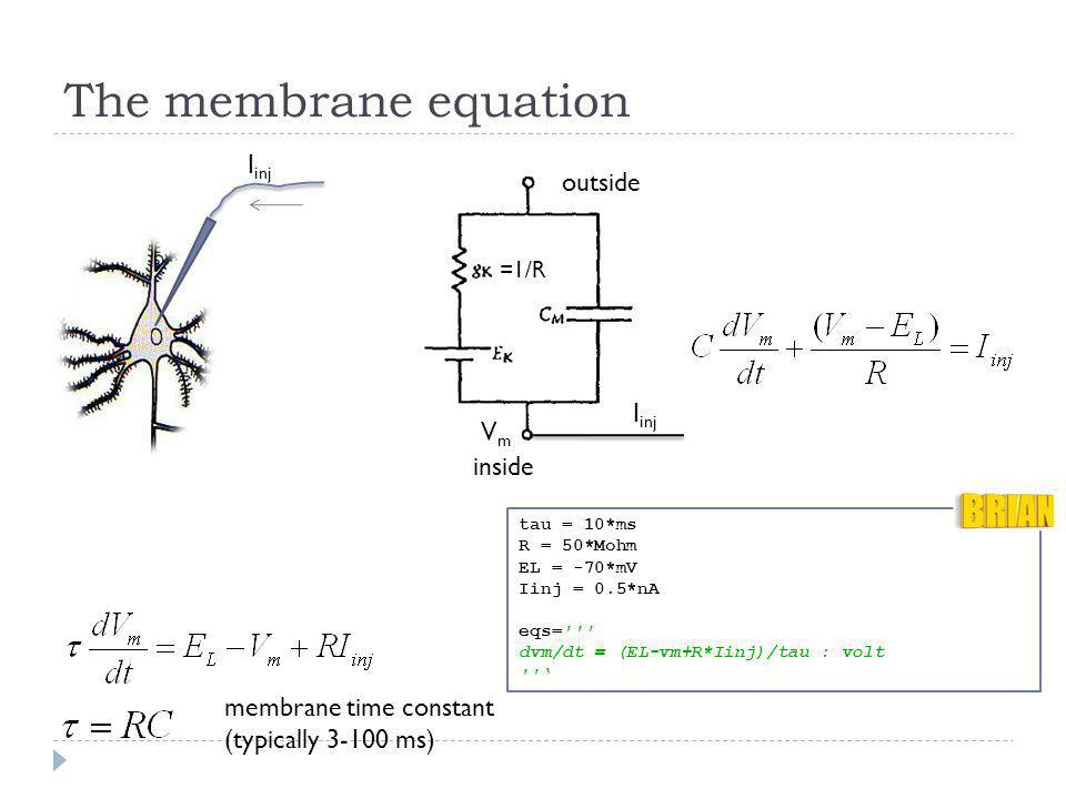 The membrane equation Iinj outside Iinj Vm inside
