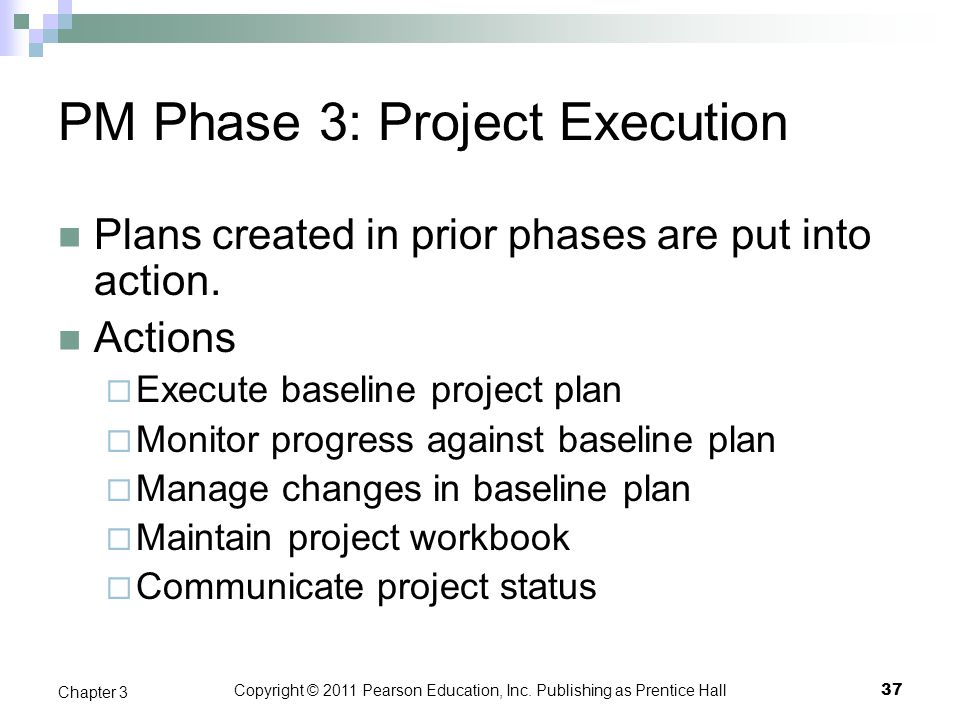 PM Phase 3: Project Execution