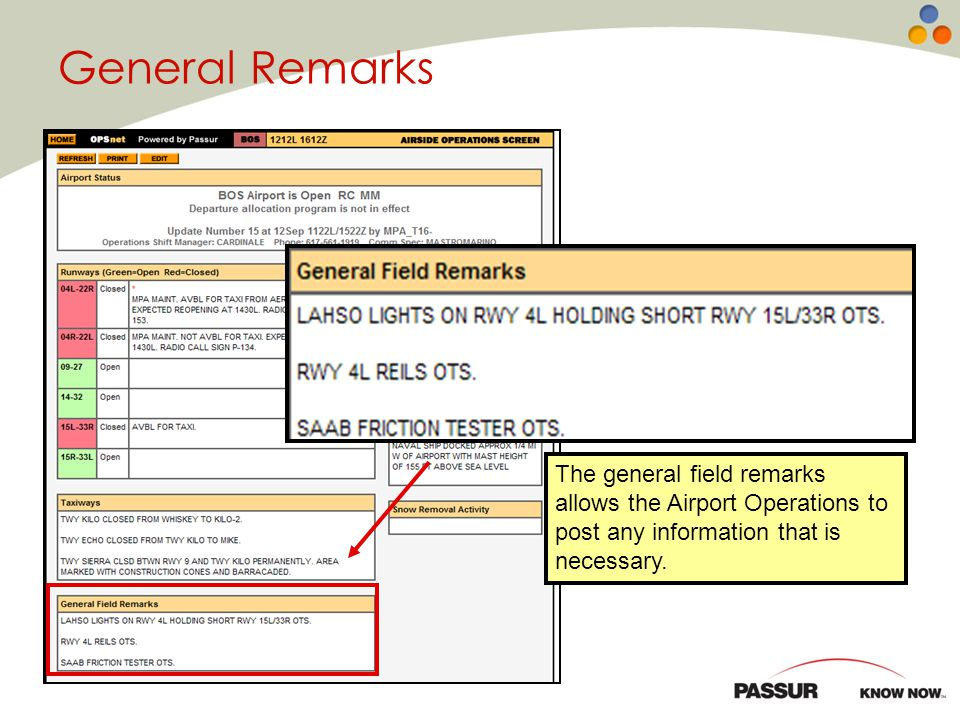General Remarks The General Field Remarks section can contain a wide variety of information that is not covered in other areas of the screen.