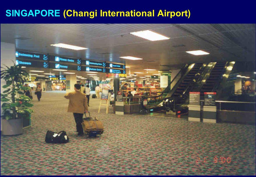 SINGAPORE (Changi International Airport)