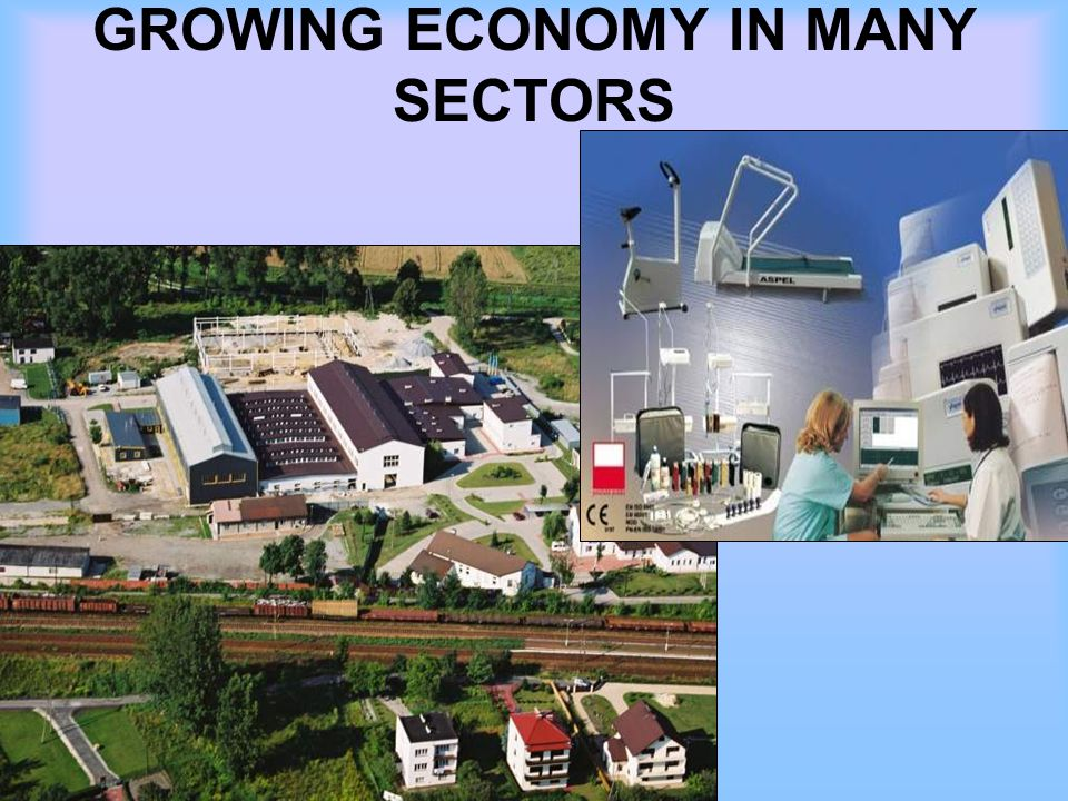 GROWING ECONOMY IN MANY SECTORS