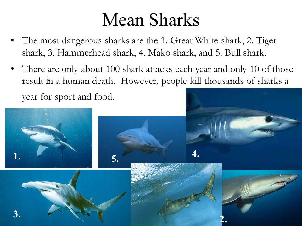 Mean Sharks The most dangerous sharks are the 1. Great White shark, 2. Tiger shark, 3. Hammerhead shark, 4. Mako shark, and 5. Bull shark.