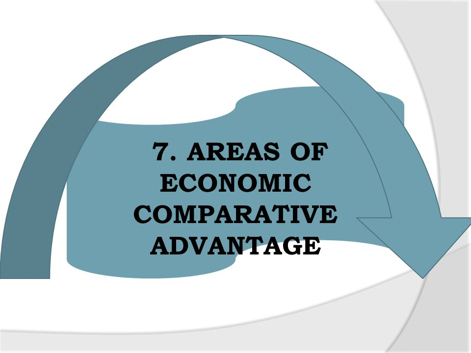 7. AREAS OF ECONOMIC COMPARATIVE ADVANTAGE